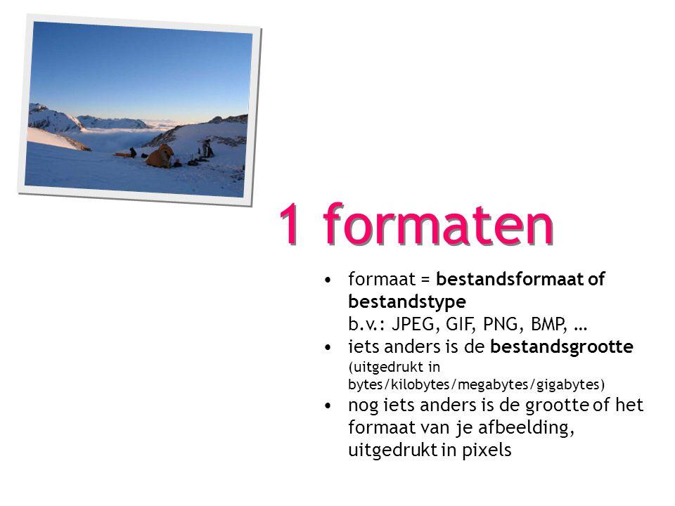 1 formaten formaat = bestandsformaat of bestandstype b.v.: JPEG, GIF, PNG, BMP, … iets anders is de bestandsgrootte (uitgedrukt in bytes/kilobytes/megabytes/gigabytes) nog iets anders is de grootte of het formaat van je afbeelding, uitgedrukt in pixels