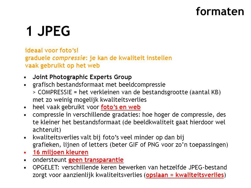 formaten 1 JPEG ideaal voor foto's.
