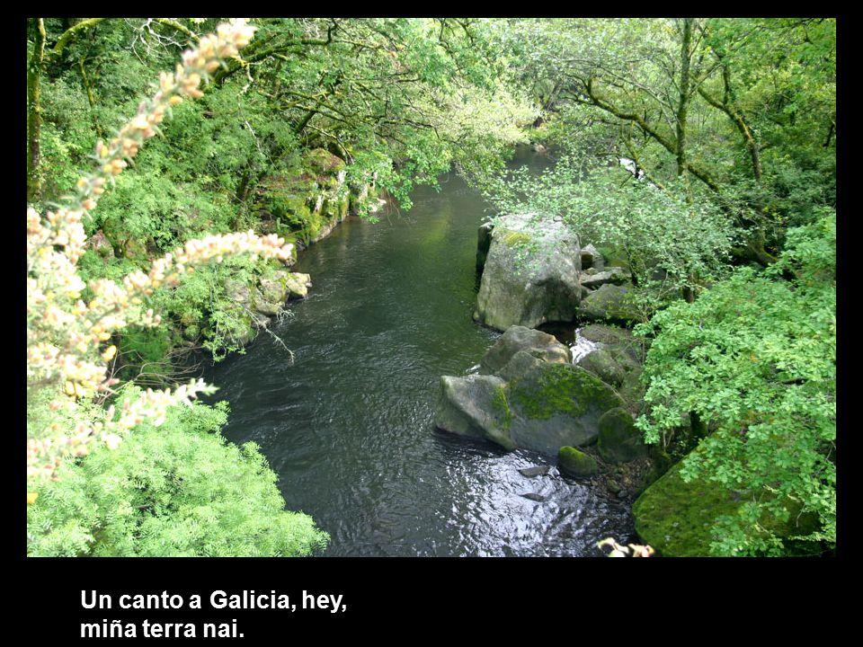 Un canto a Galicia, hey, terra do meu pai.