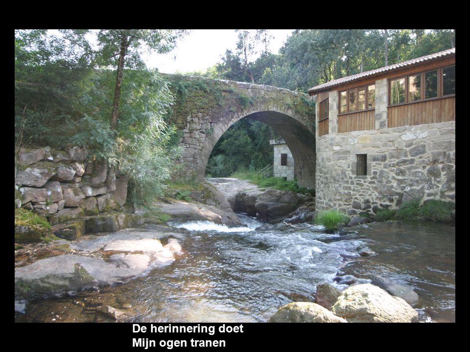 Ik mis je rivieren En stromen