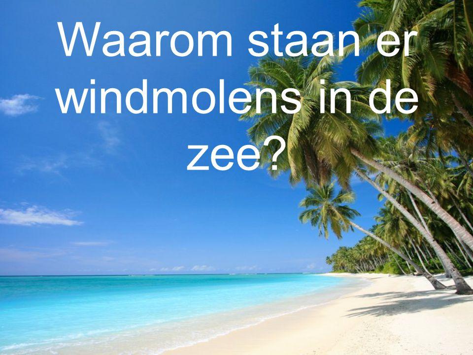 Waarom staan er windmolens in de zee?