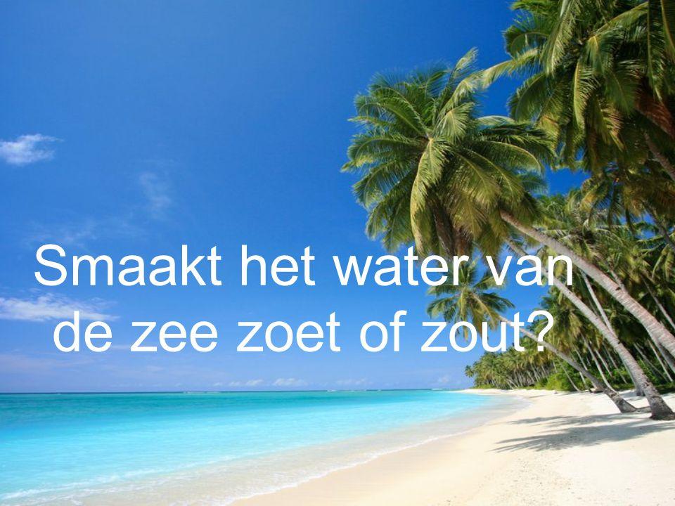Smaakt het water van de zee zoet of zout?