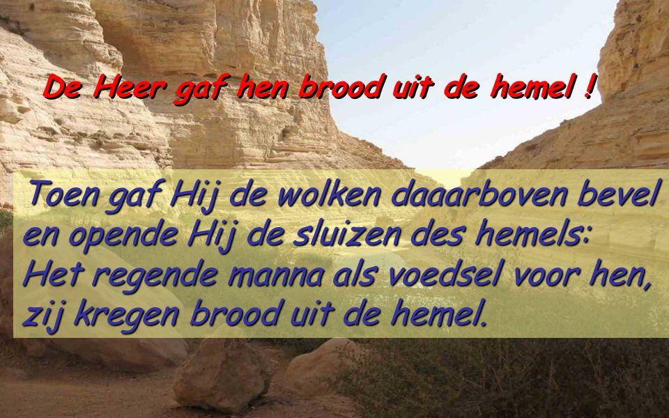 Psalm 78 (77) De Heer gaf hen brood uit de hemel Al wat wij gehoord hebben en begrepen wat ons door de vaderen is verteld.