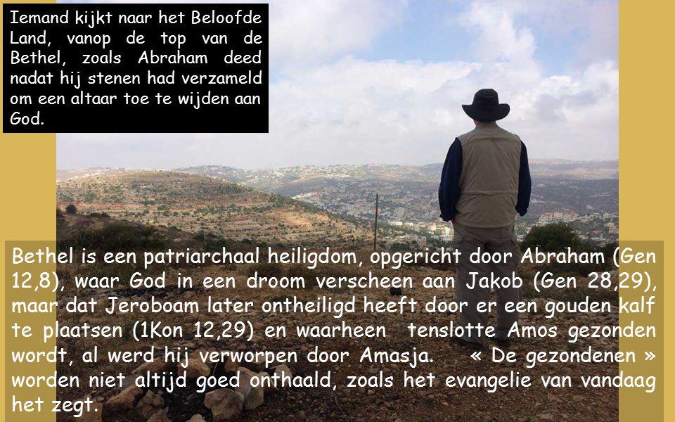 Bethel is een patriarchaal heiligdom, opgericht door Abraham (Gen 12,8), waar God in een droom verscheen aan Jakob (Gen 28,29), maar dat Jeroboam later ontheiligd heeft door er een gouden kalf te plaatsen (1Kon 12,29) en waarheen tenslotte Amos gezonden wordt, al werd hij verworpen door Amasja.