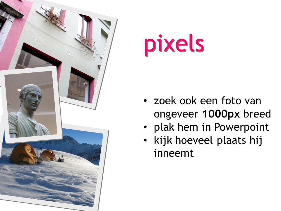 pixels zoek ook een foto van ongeveer 1000px breed plak hem in Powerpoint kijk hoeveel plaats hij inneemt