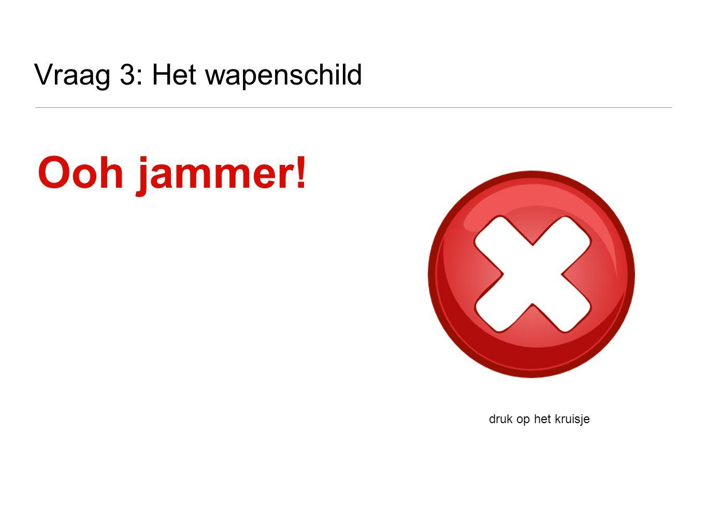 Vraag 7: Het wapen van Vlaanderen Wat is de vlag van Vlaanderen? A B