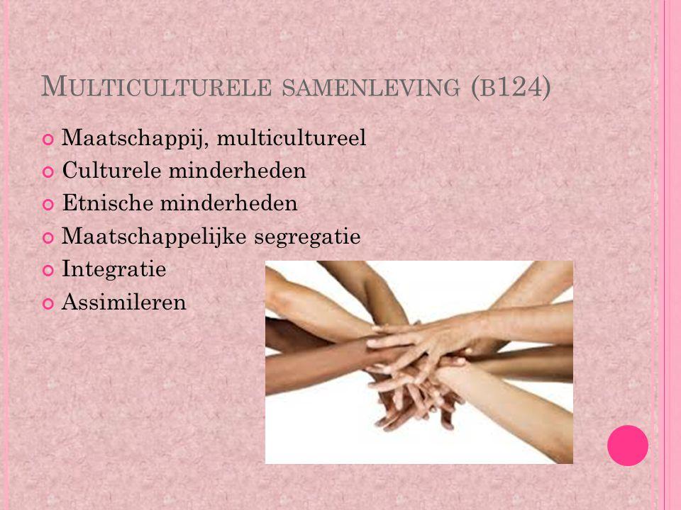 M ULTICULTURELE SAMENLEVING ( B 124) Maatschappij, multicultureel Culturele minderheden Etnische minderheden Maatschappelijke segregatie Integratie As
