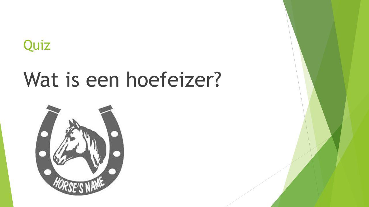 Quiz Wat is een hoefeizer?