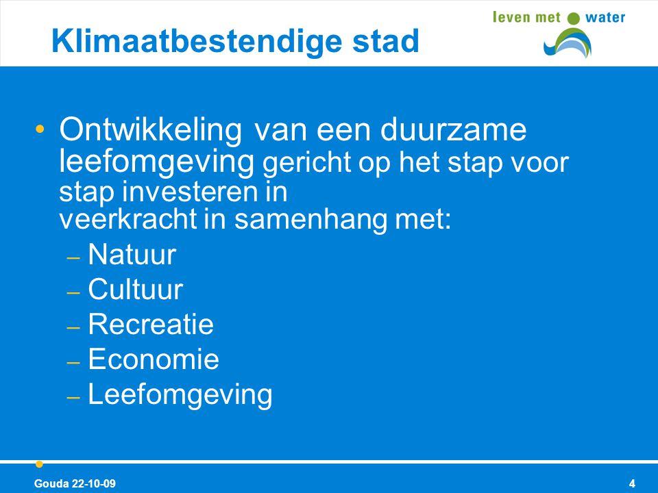 Ontwikkeling van een duurzame leefomgeving gericht op het stap voor stap investeren in veerkracht in samenhang met: – Natuur – Cultuur – Recreatie – Economie – Leefomgeving Gouda 22-10-09 Klimaatbestendige stad van de toekomst 4