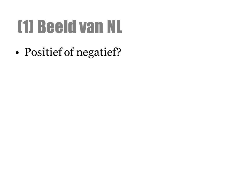 Positief of negatief? (1) Beeld van NL