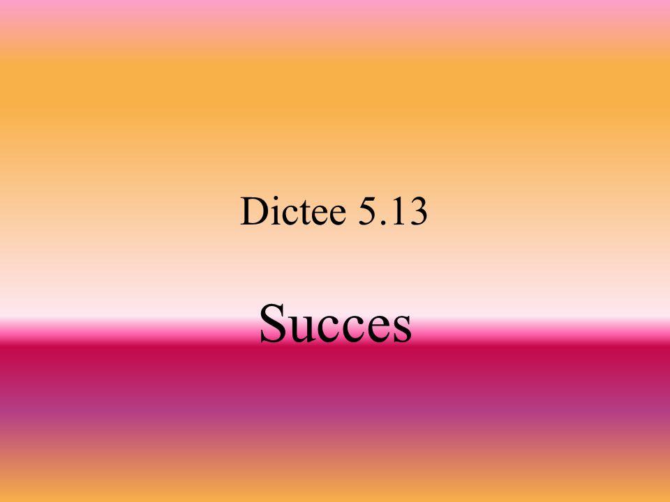 Dictee 5.13 Succes