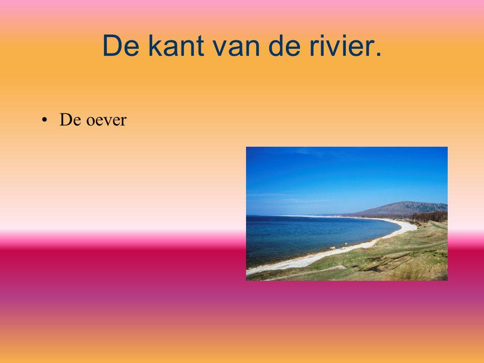 De kant van de rivier. De oever