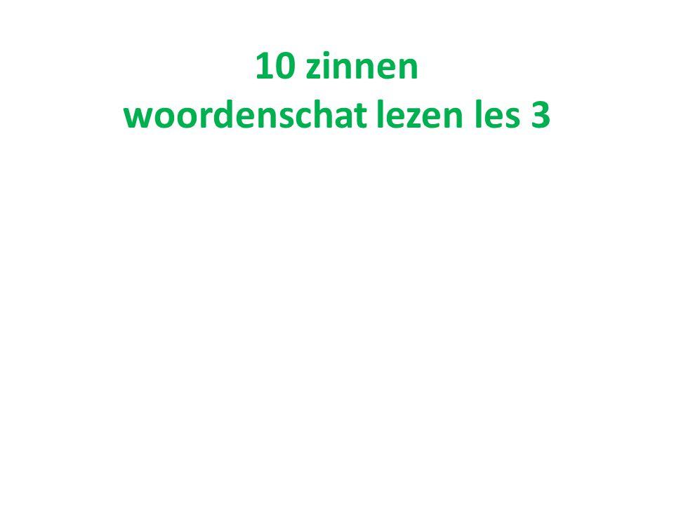 10 zinnen woordenschat lezen les 3