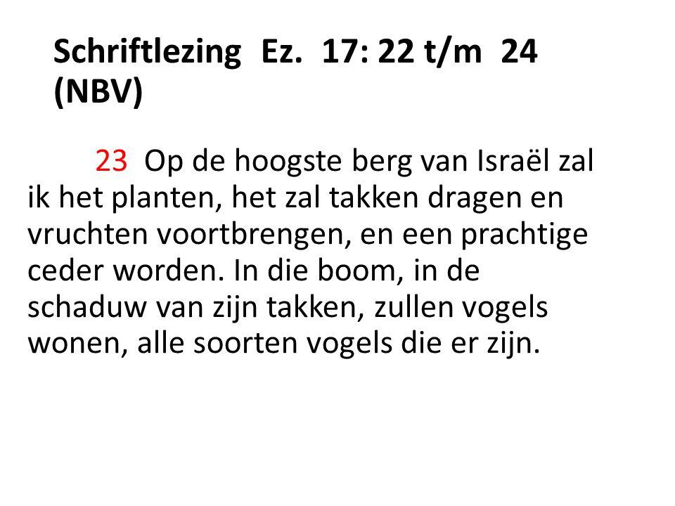 Schriftlezing Ez.