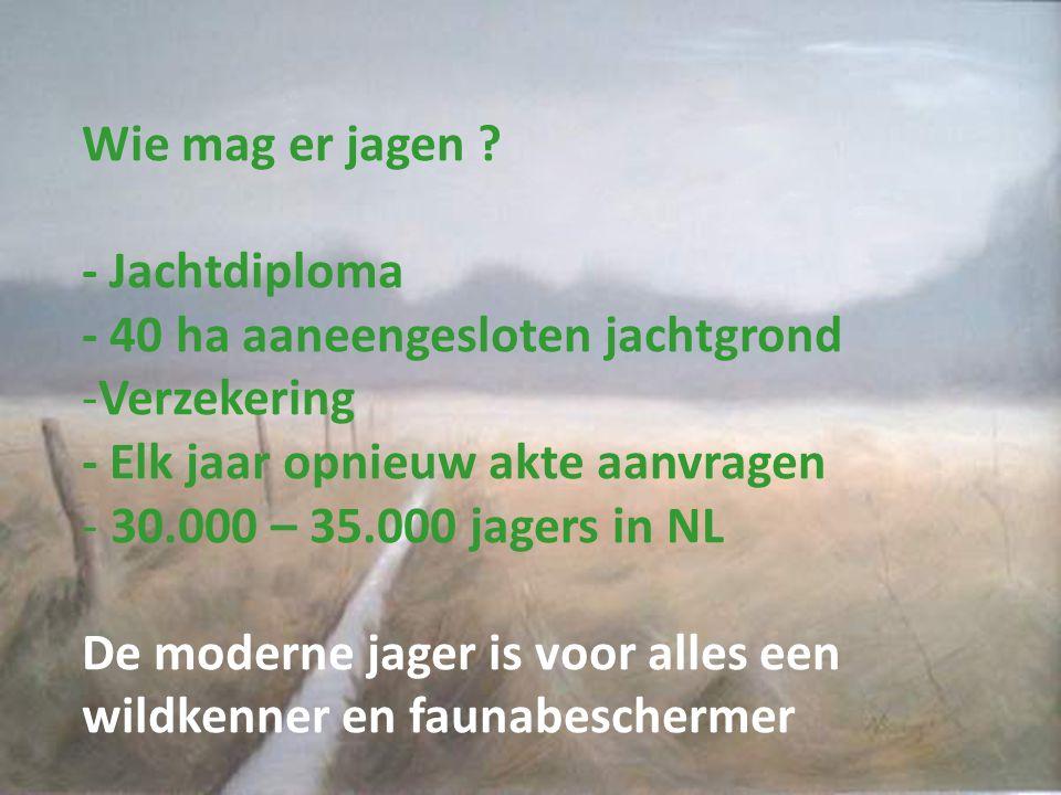 Wie mag er jagen ? - Jachtdiploma - 40 ha aaneengesloten jachtgrond -Verzekering - Elk jaar opnieuw akte aanvragen - 30.000 – 35.000 jagers in NL De m