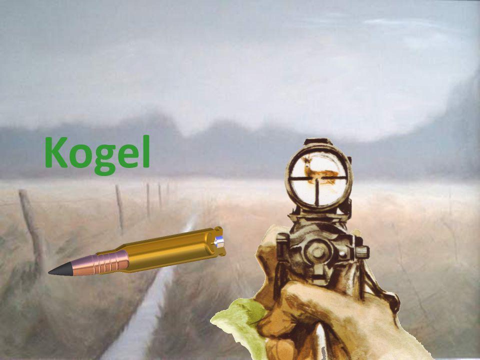 Kogel