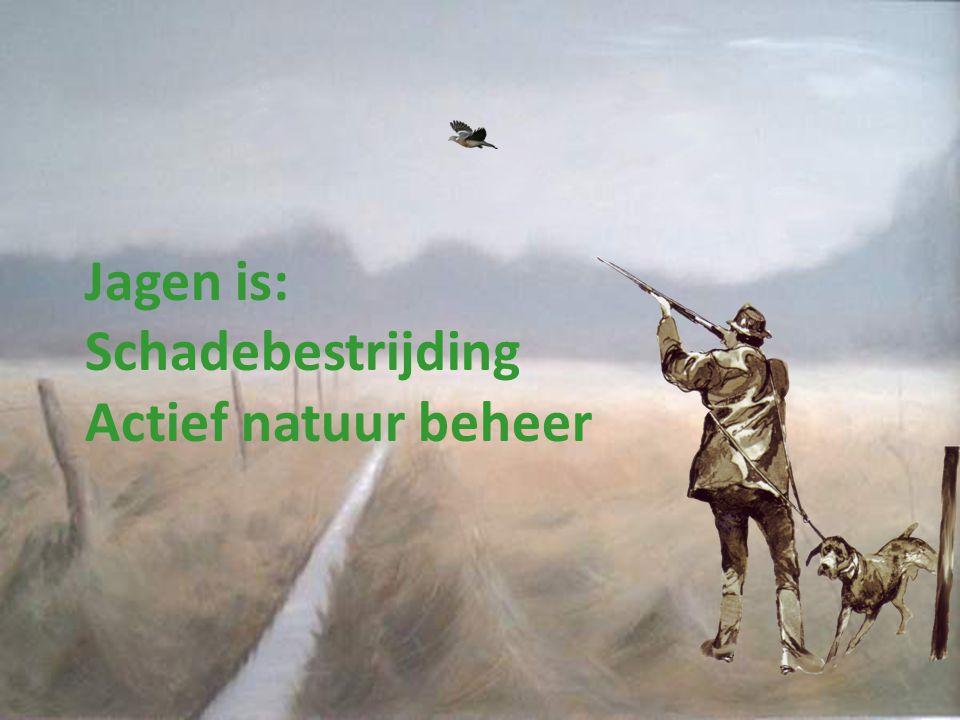 Jagen is: Schadebestrijding Actief natuur beheer