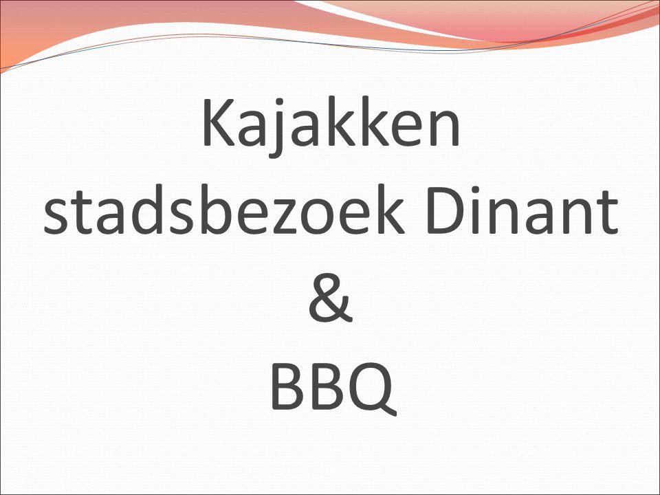 Kajakken stadsbezoek Dinant & BBQ