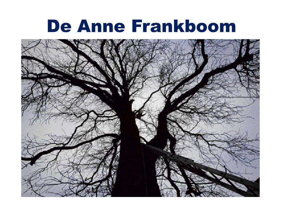 De Anne Frankboom