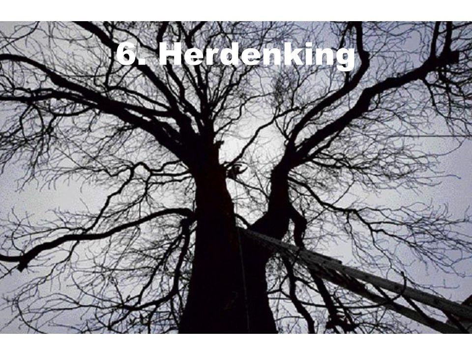 6. Herdenking