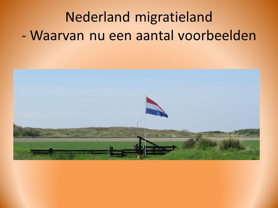 Nederland migratieland - Waarvan nu een aantal voorbeelden