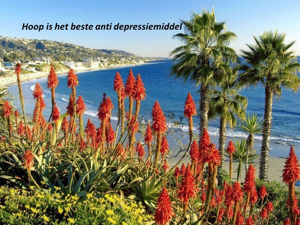 Hoop is het beste anti depressiemiddel