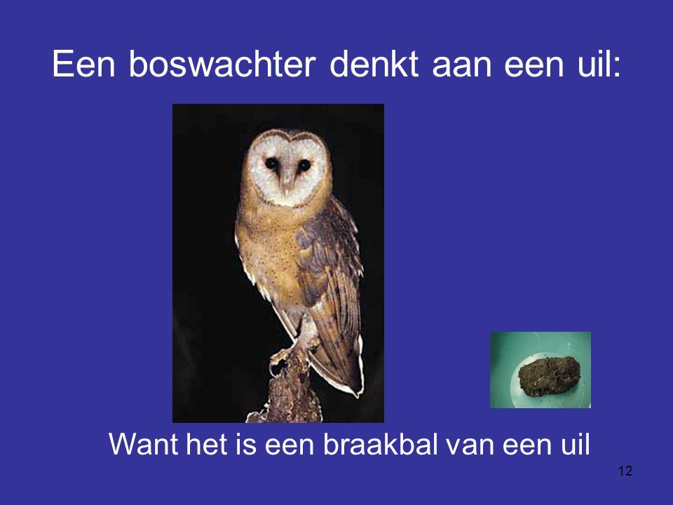 12 Een boswachter denkt aan een uil: Want het is een braakbal van een uil