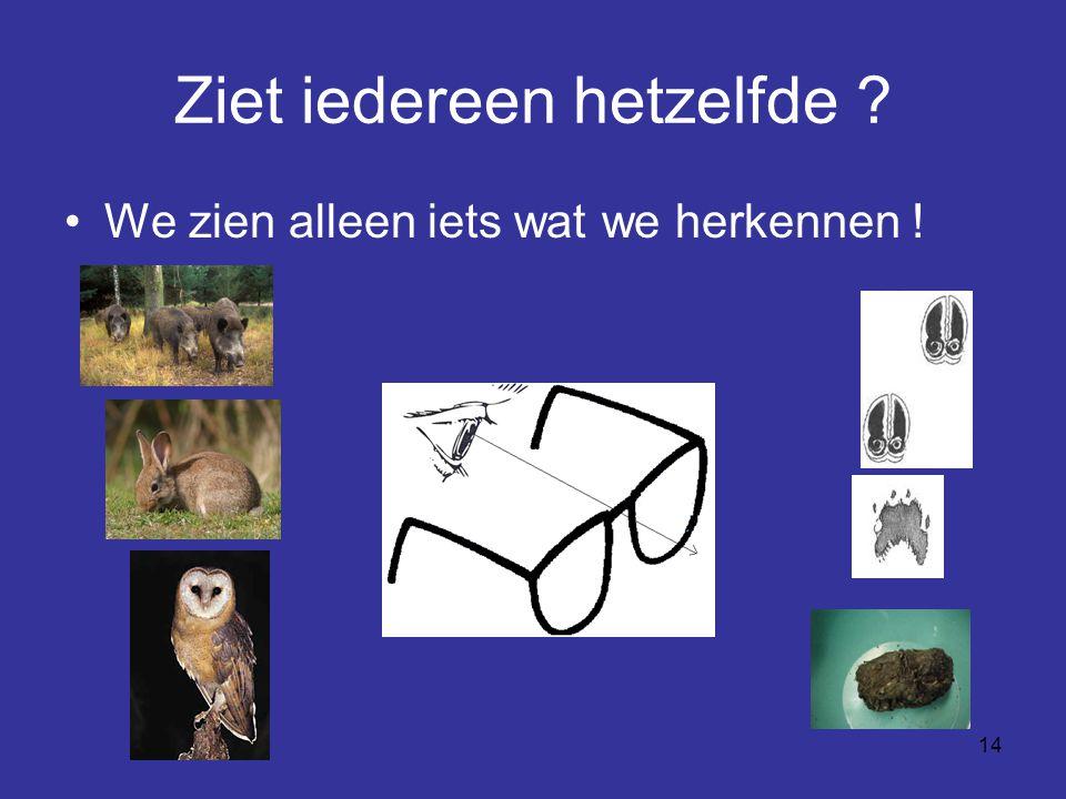 14 Ziet iedereen hetzelfde ? We zien alleen iets wat we herkennen !