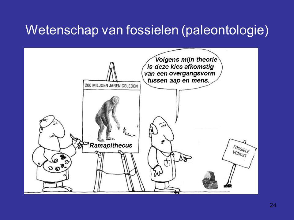24 Wetenschap van fossielen (paleontologie)