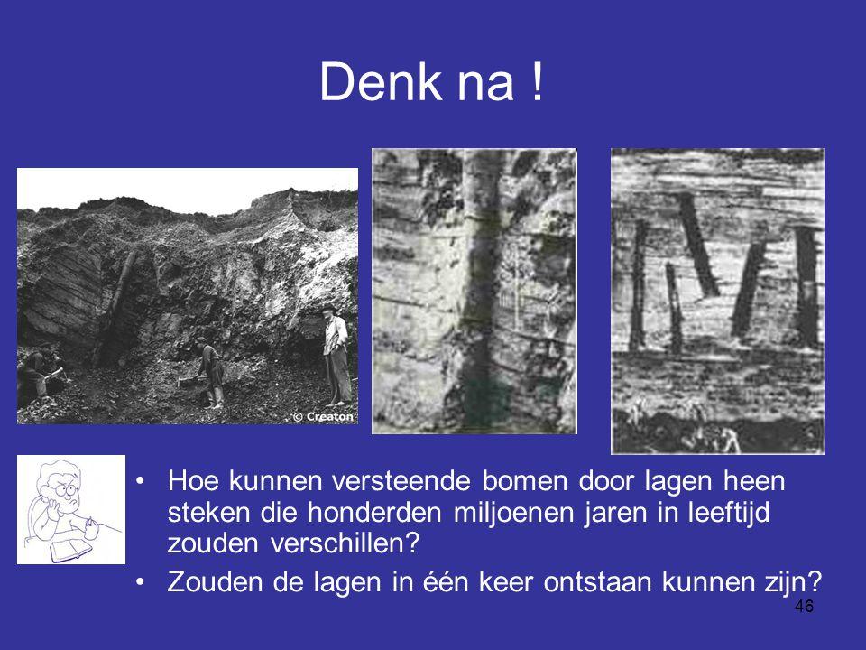 46 Denk na ! Hoe kunnen versteende bomen door lagen heen steken die honderden miljoenen jaren in leeftijd zouden verschillen? Zouden de lagen in één k