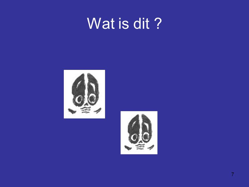 7 Wat is dit ?
