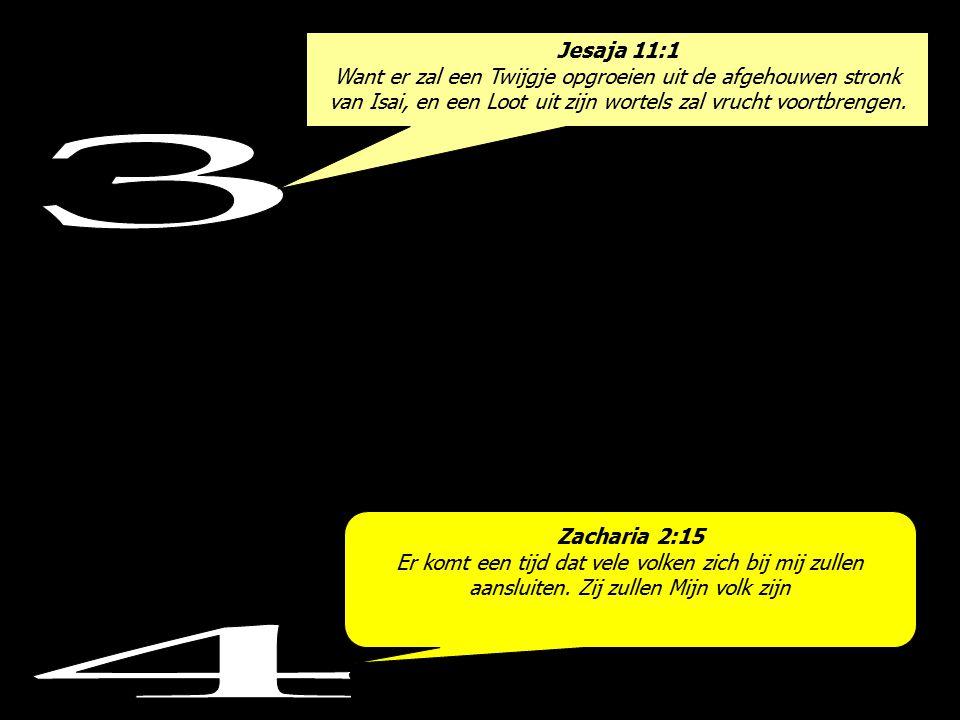 Jesaja 11:1 Want er zal een Twijgje opgroeien uit de afgehouwen stronk van Isai, en een Loot uit zijn wortels zal vrucht voortbrengen.