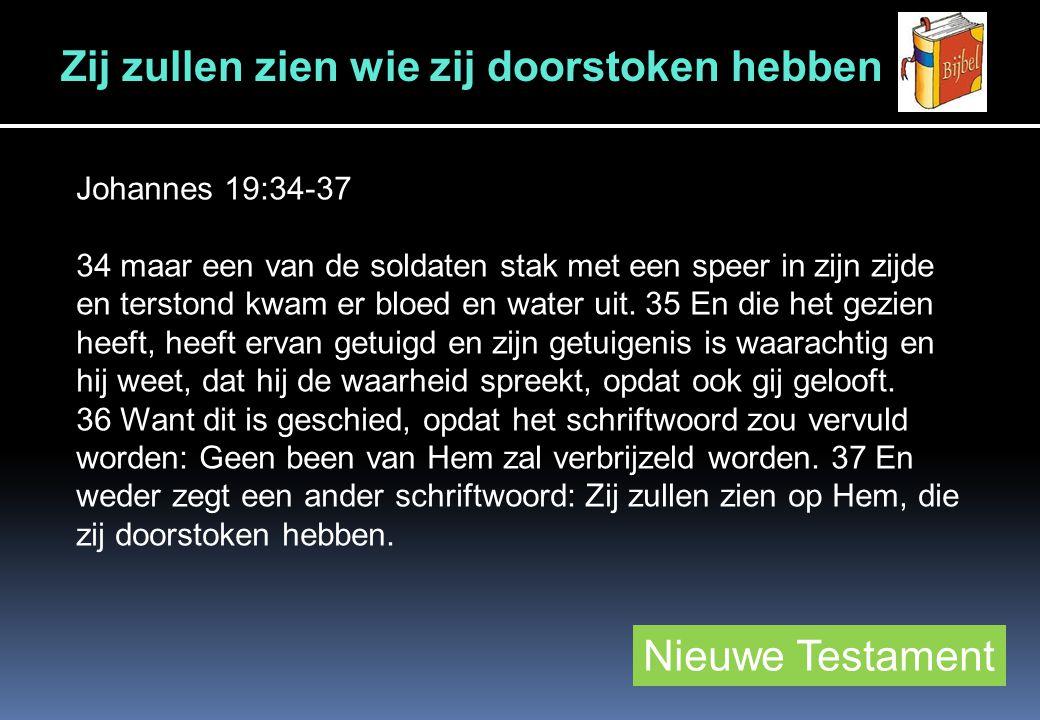 Nieuwe Testament Johannes 19:34-37 34 maar een van de soldaten stak met een speer in zijn zijde en terstond kwam er bloed en water uit.