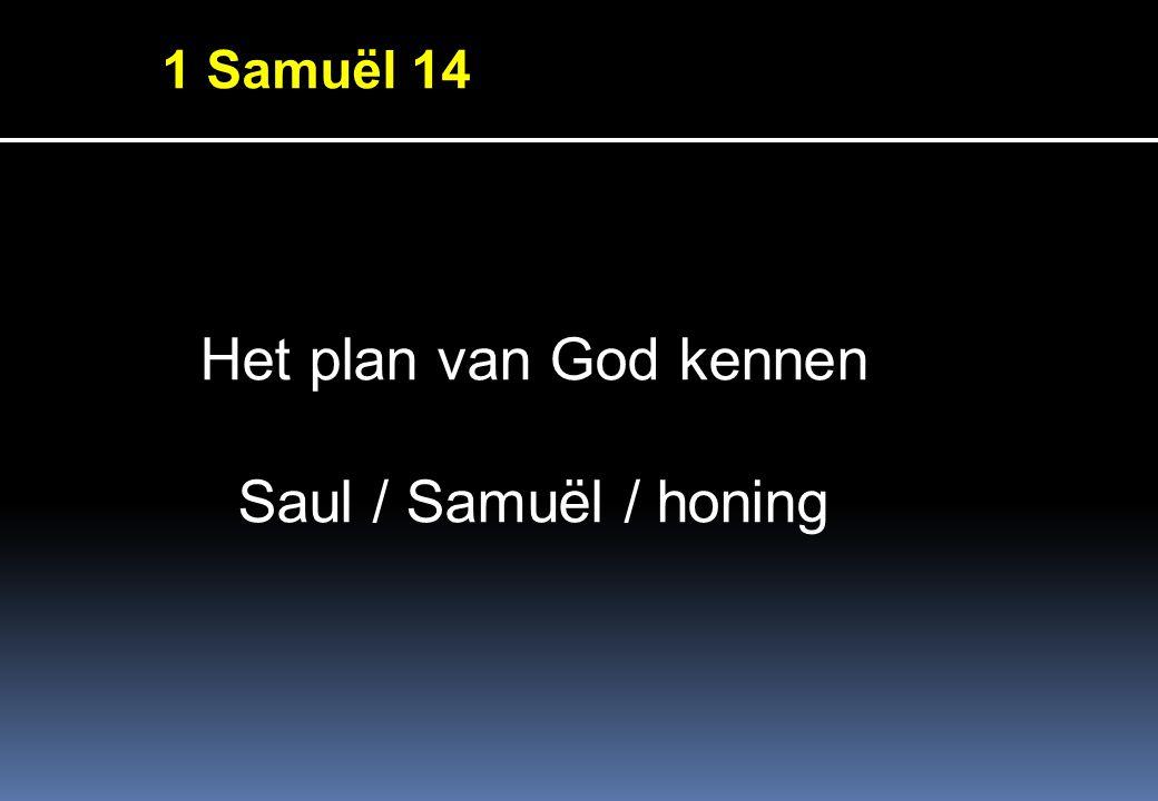 1 Samuёl 14 Het plan van God kennen Saul / Samuёl / honing