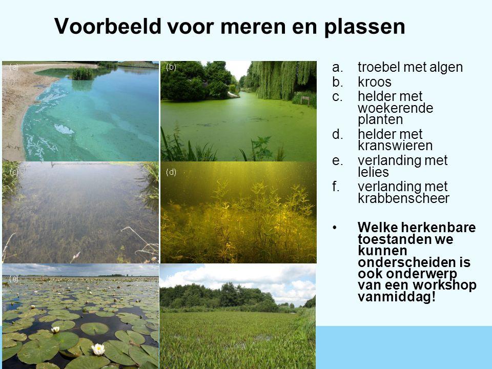 Voorbeeld voor meren en plassen a.troebel met algen b.kroos c.helder met woekerende planten d.helder met kranswieren e.verlanding met lelies f.verland