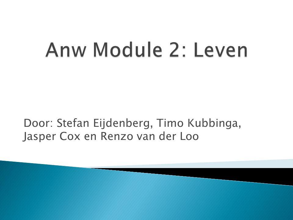 Door: Stefan Eijdenberg, Timo Kubbinga, Jasper Cox en Renzo van der Loo