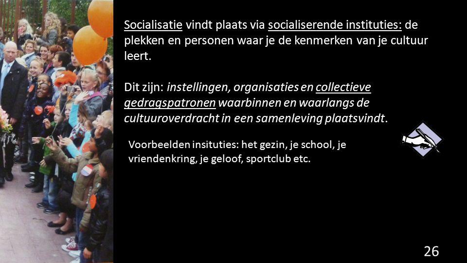 Socialisatie vindt plaats via socialiserende instituties: de plekken en personen waar je de kenmerken van je cultuur leert. Dit zijn: instellingen, or