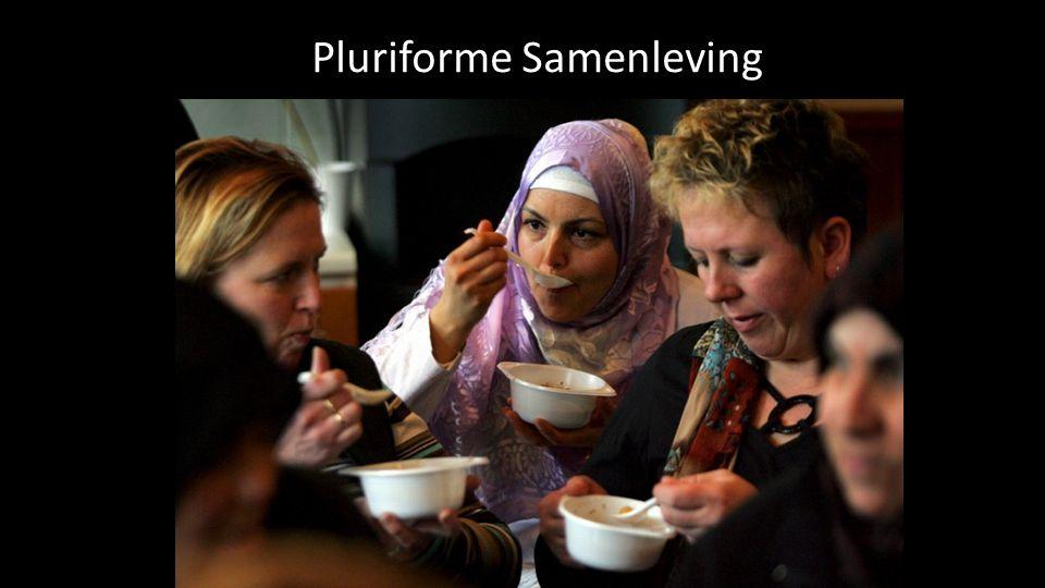 Pluriform: Pluri = veel.Veelvormigheid.