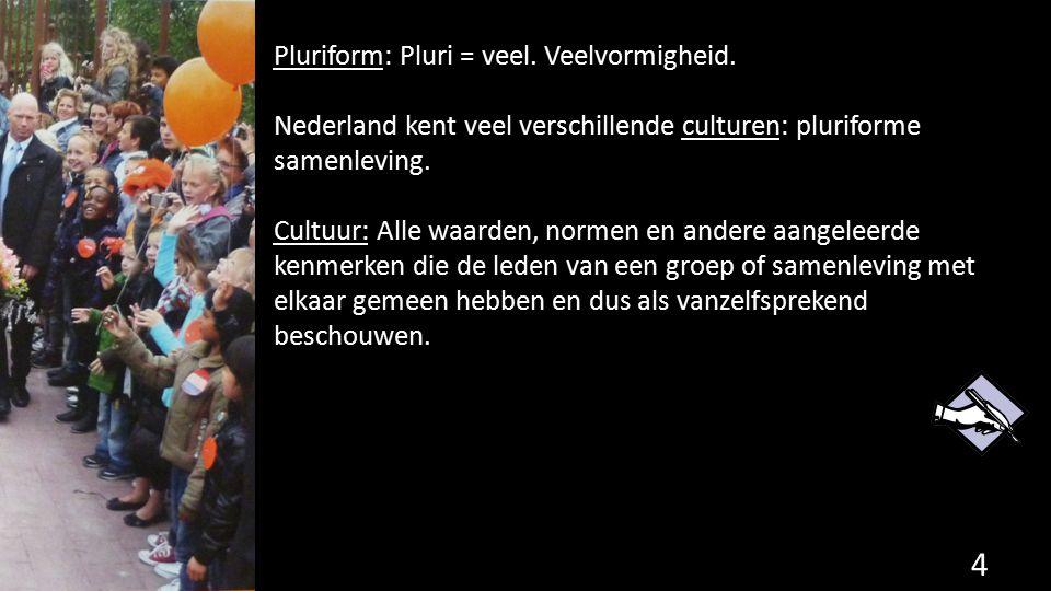 Pluriform: Pluri = veel. Veelvormigheid. Nederland kent veel verschillende culturen: pluriforme samenleving. Cultuur: Alle waarden, normen en andere a
