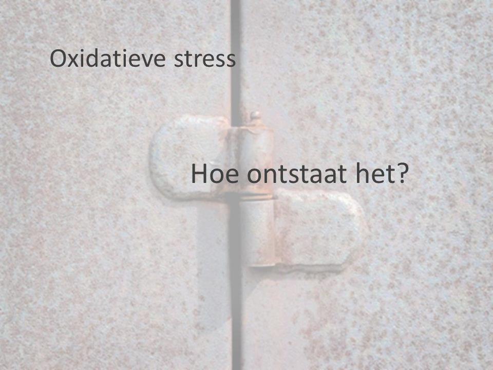 Hoe ontstaat het? Oxidatieve stress