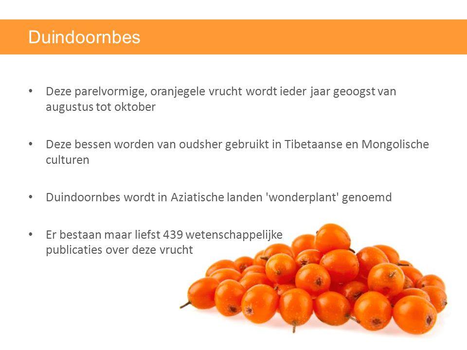 Duindoornbes Deze parelvormige, oranjegele vrucht wordt ieder jaar geoogst van augustus tot oktober Deze bessen worden van oudsher gebruikt in Tibetaa