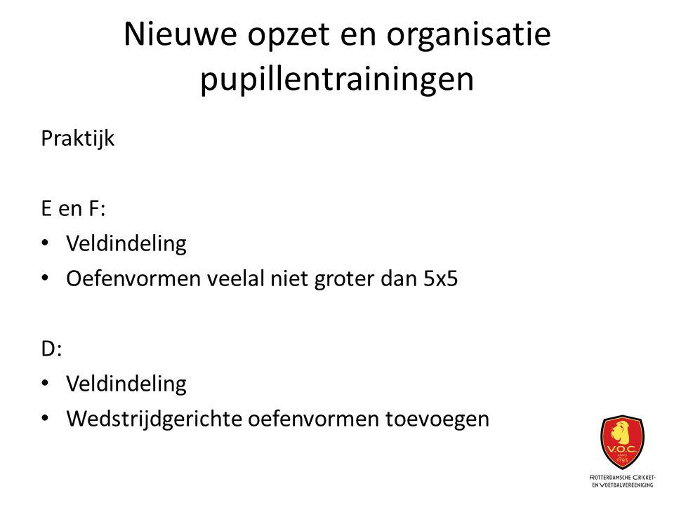 Nieuwe opzet en organisatie pupillentrainingen Praktijk E en F: Veldindeling Oefenvormen veelal niet groter dan 5x5 D: Veldindeling Wedstrijdgerichte
