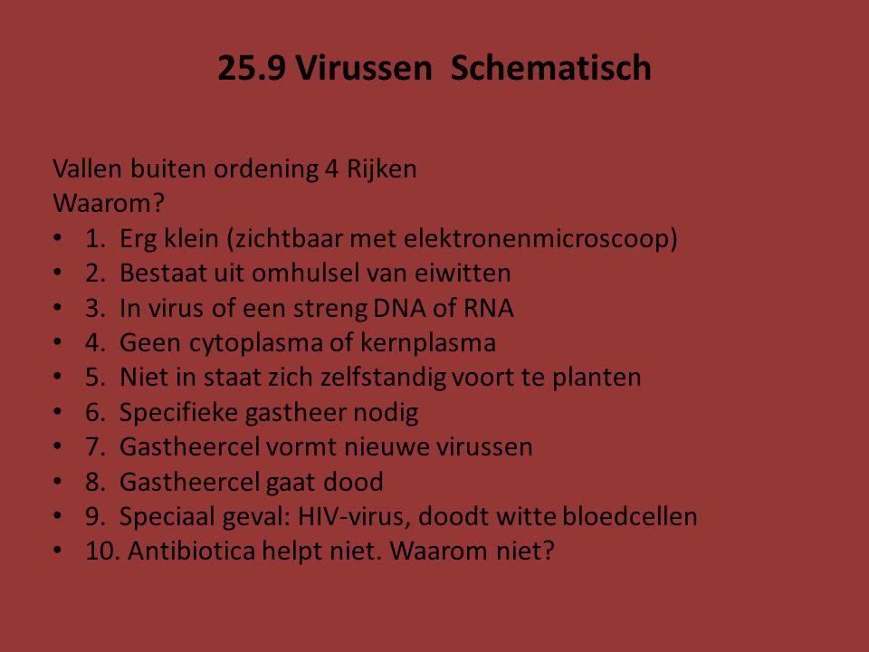 25.9 Virussen Schematisch Vallen buiten ordening 4 Rijken Waarom? 1. Erg klein (zichtbaar met elektronenmicroscoop) 2. Bestaat uit omhulsel van eiwitt