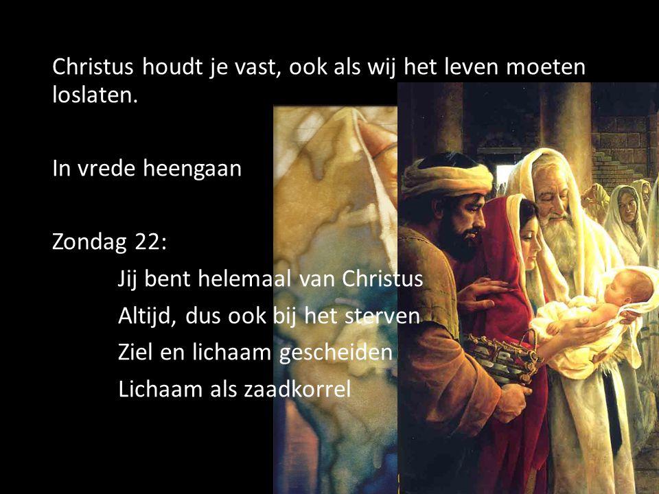Christus houdt je vast, ook als wij het leven moeten loslaten. In vrede heengaan Zondag 22: Jij bent helemaal van Christus Altijd, dus ook bij het ste