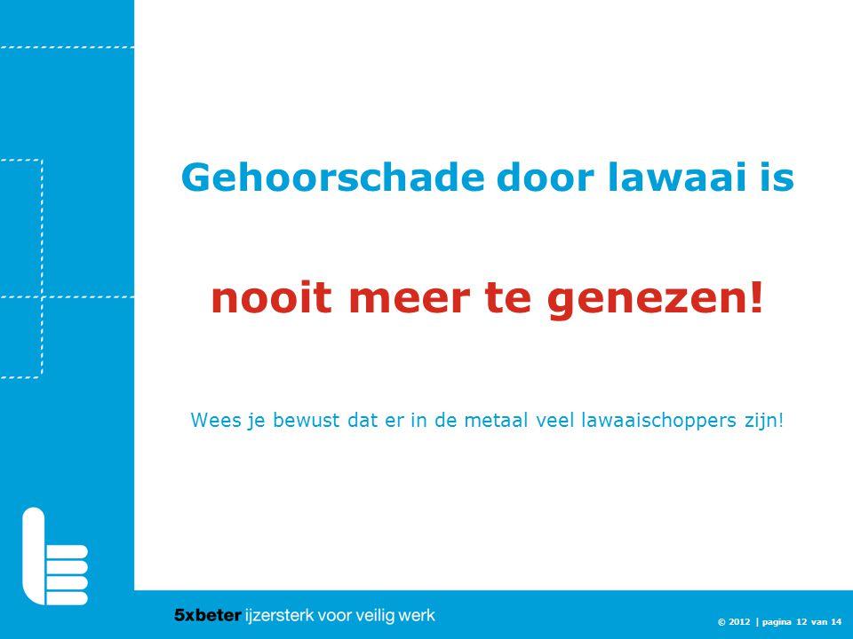 Gehoorschade door lawaai is nooit meer te genezen! Wees je bewust dat er in de metaal veel lawaaischoppers zijn! © 2012 | pagina 12 van 14