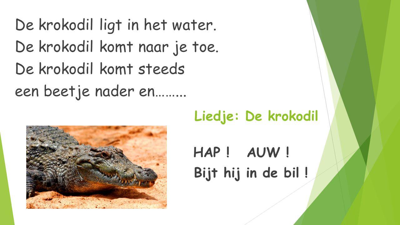 Liedje: De krokodil De krokodil ligt in het water. De krokodil komt naar je toe. De krokodil komt steeds een beetje nader en……... HAP ! AUW ! HAP ! AU