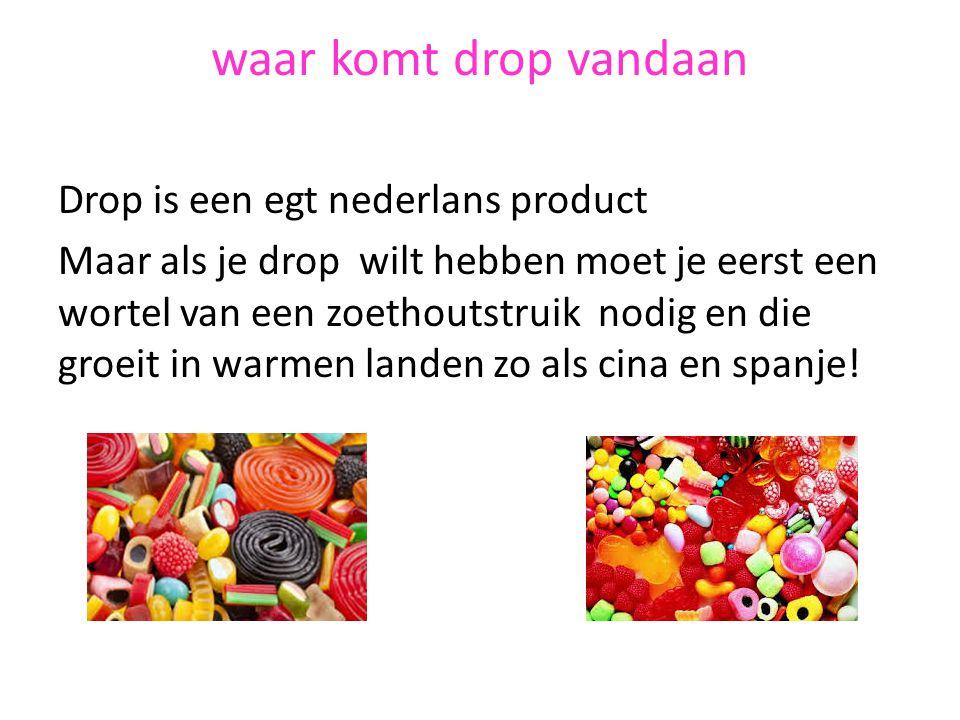 waar komt drop vandaan Drop is een egt nederlans product Maar als je drop wilt hebben moet je eerst een wortel van een zoethoutstruik nodig en die gro