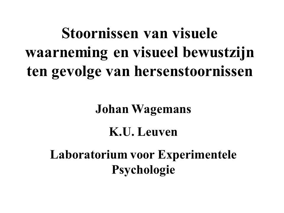 Stoornissen van visuele waarneming en visueel bewustzijn ten gevolge van hersenstoornissen Johan Wagemans K.U. Leuven Laboratorium voor Experimentele
