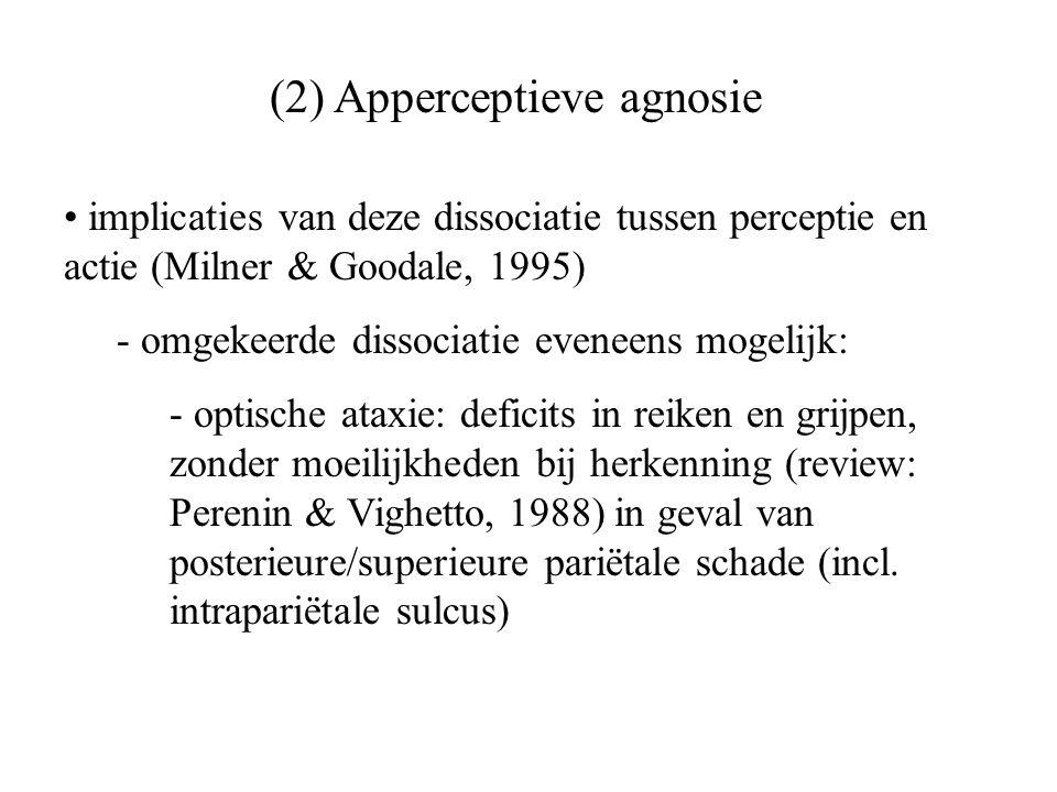 (2) Apperceptieve agnosie implicaties van deze dissociatie tussen perceptie en actie (Milner & Goodale, 1995) - omgekeerde dissociatie eveneens mogeli