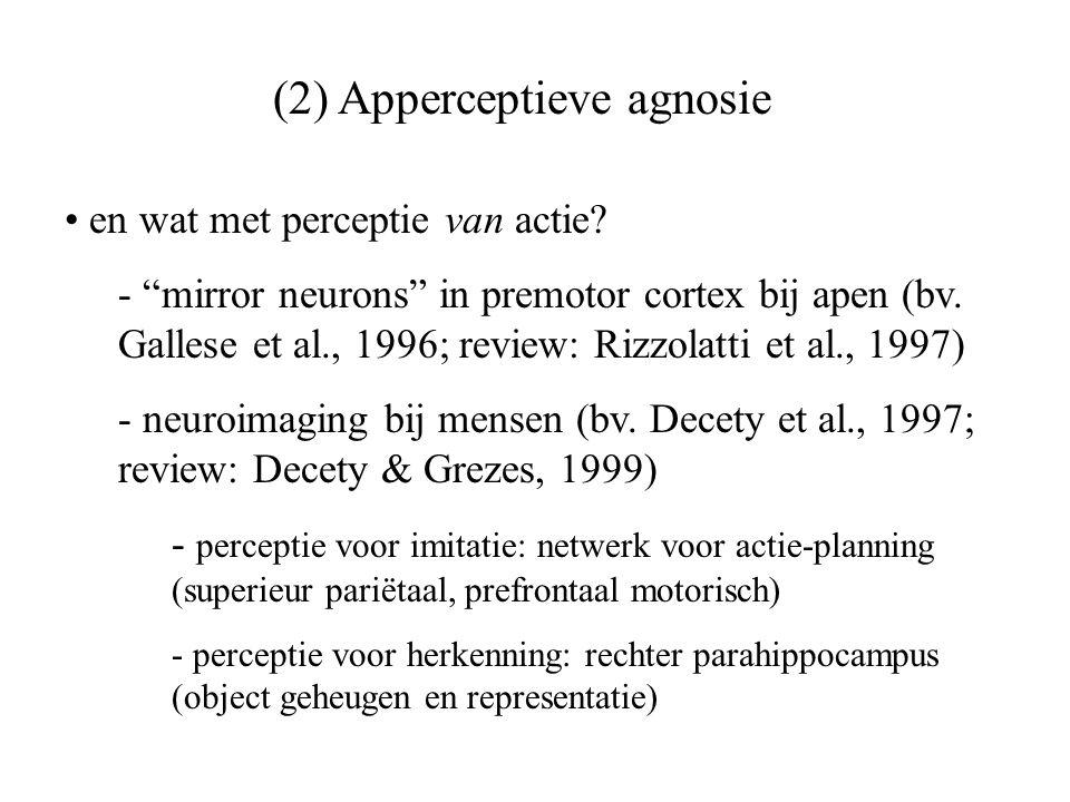 """(2) Apperceptieve agnosie en wat met perceptie van actie? - """"mirror neurons"""" in premotor cortex bij apen (bv. Gallese et al., 1996; review: Rizzolatti"""